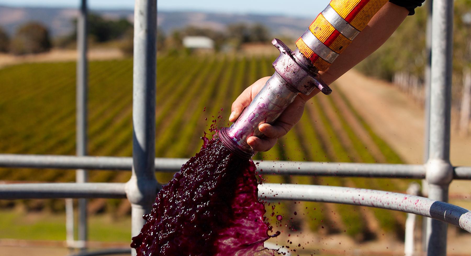 Pirramimma_winemaking-slider2